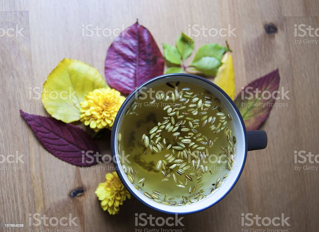 Cup of fennel tea with seeds. Autumnal decoration. Closup. stock photo
