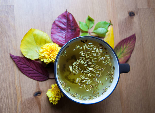 Cup of fennel tea with seeds. Autumnal decoration. Closup. Cup of fennel tea with seeds, yellow chrysanthemums and colored leaves on wooden background. Vertical composition. fennel stock pictures, royalty-free photos & images