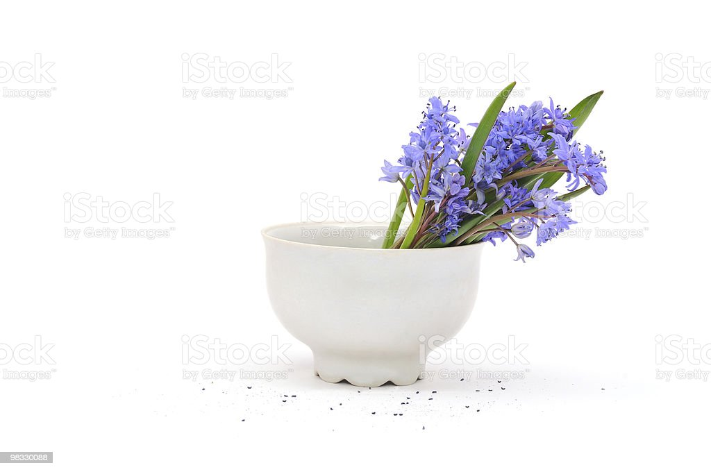 cup of flowers royalty-free stock photo