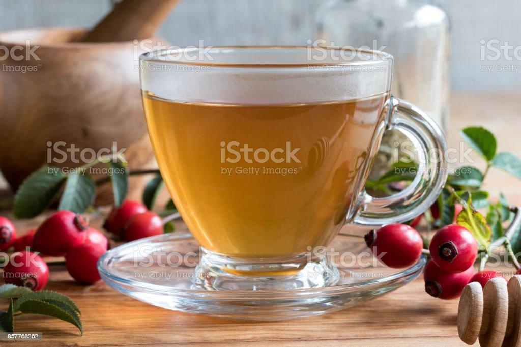 A cup of freshly prepared rosehip tea stock photo