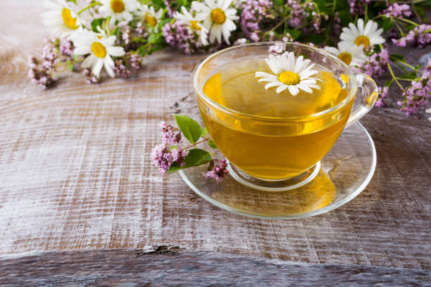 Cup of green herbal camomile tea and herbs stock photo