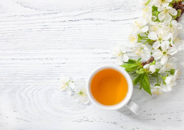 kopp grönt te och gren av blossom cherry på vita träbord. - eftermiddagste bildbanksfoton och bilder