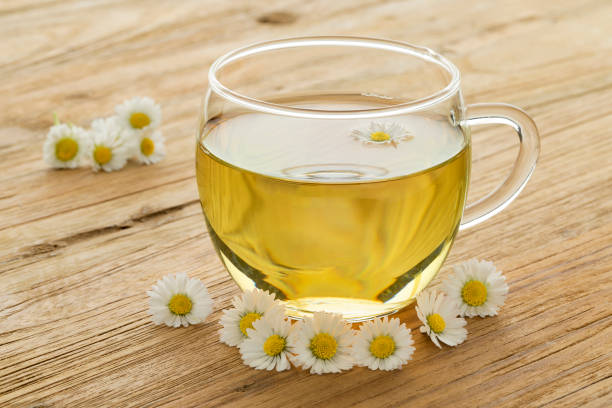 kopje thee gezond daisy - madeliefje stockfoto's en -beelden
