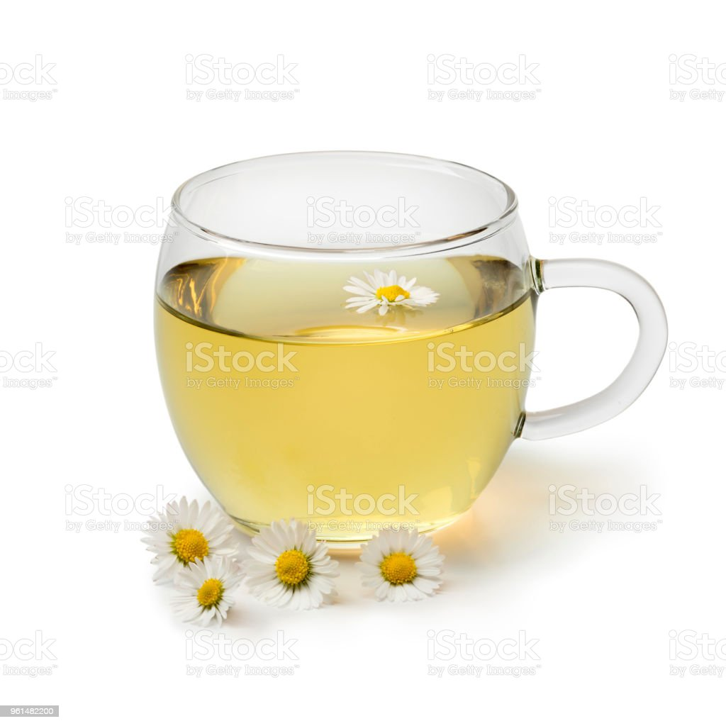 Cup Of Healthy Daisy Tea Stock Photo More Pictures Of Common Daisy