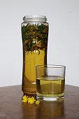 Cup of healthy dandelion tea. Herbal medicine