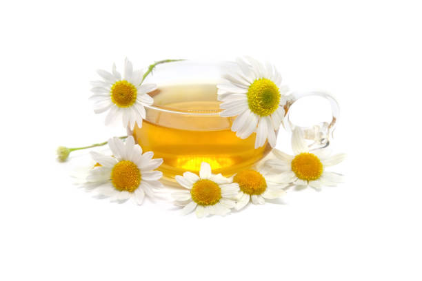 Cup of herbal tea with chamomile flowers. Herbal Medicine. stock photo