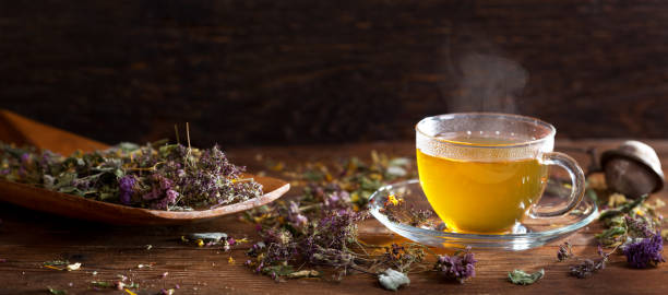 Cup of herbal tea with various herbs stock photo