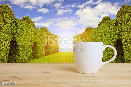 519529874 istock photo cup of hot coffee 647141410