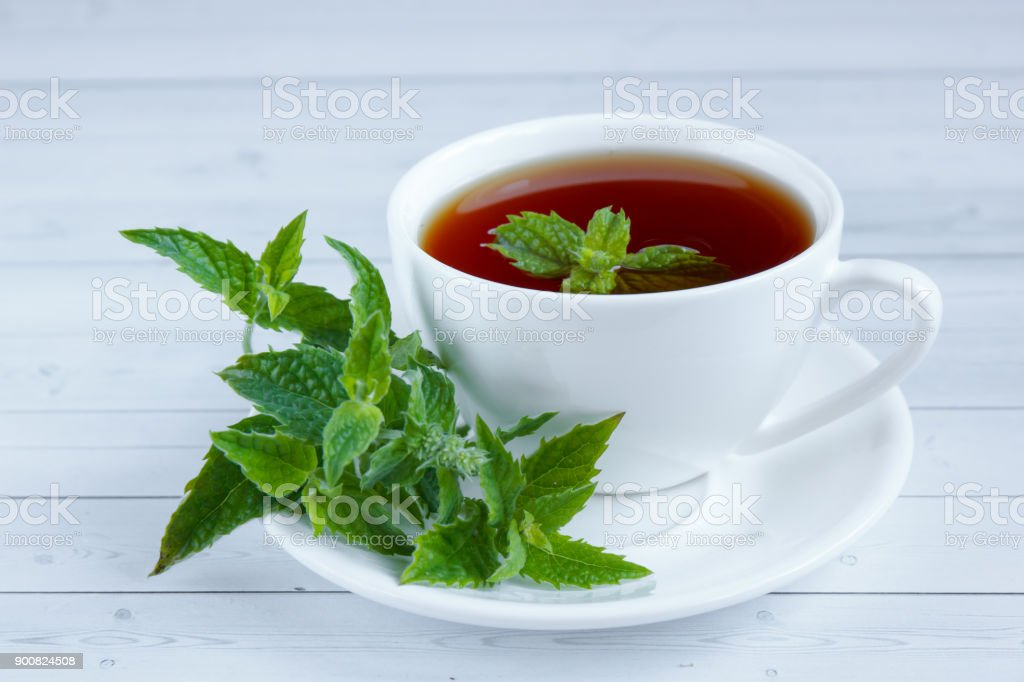Cup of mint tea and a bunch of mint on the table stock photo
