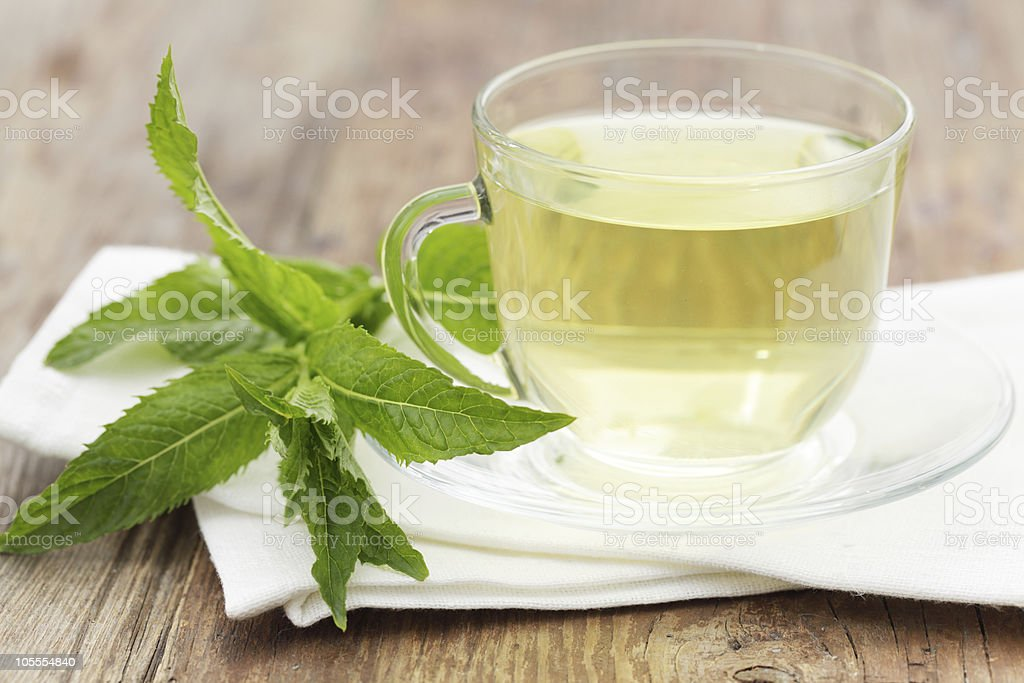 Cup of mint tea displayed on wooden counter with fresh mint stock photo