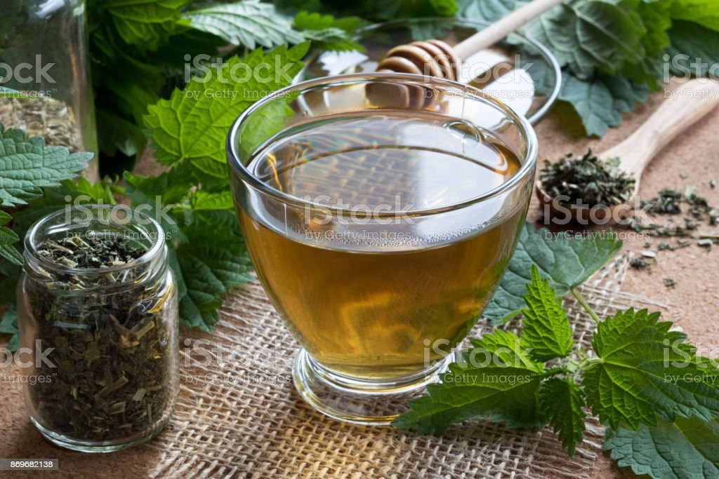 A cup of nettle tea with fresh and dry nettles stock photo