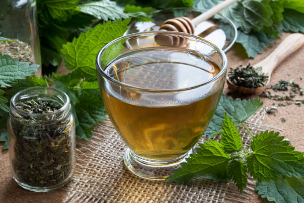 A cup of nettle tea with fresh and dry nettles A cup of nettle tea with fresh and dry nettles in the background stinging nettle stock pictures, royalty-free photos & images