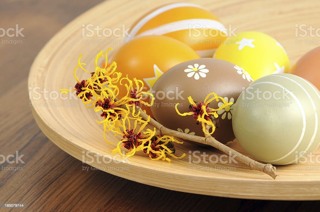 cup of ornate Easter egg with Witchhazle stock photo