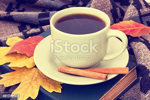istock cup of tasty coffee with cinnamon on plaid 491249503