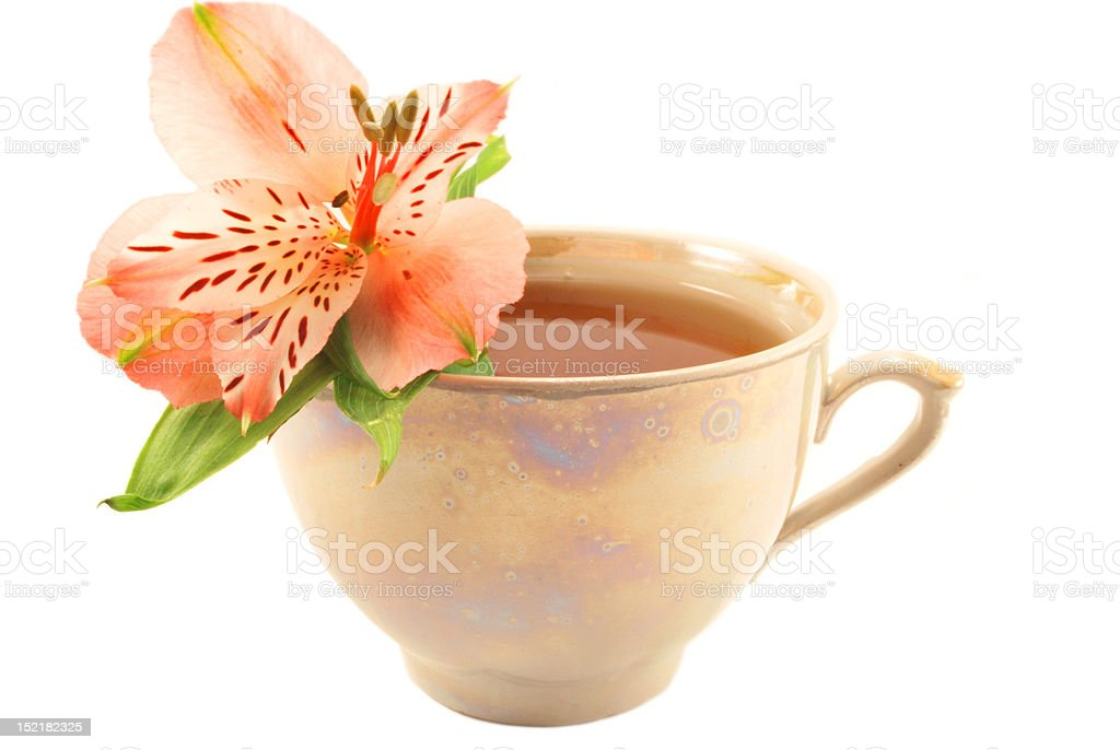 cup of tea and an Alstroemeria royalty-free stock photo