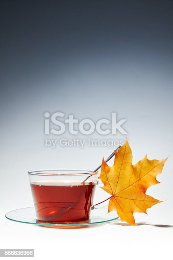 istock Cup of tea and autumn maple is clean. 866636966
