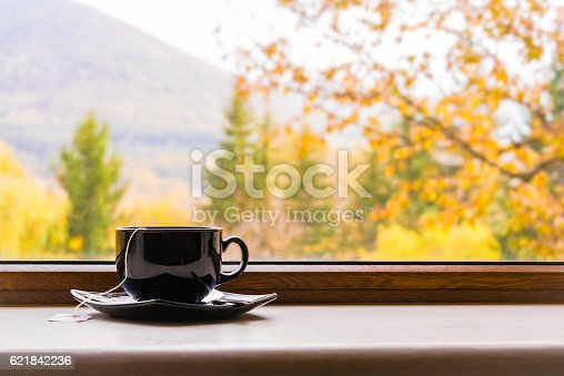 istock Cup of tea in front of window with autumn view. 621842236