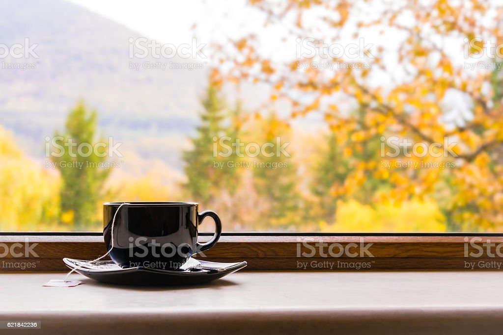 Cup of tea in front of window with autumn view. stock photo