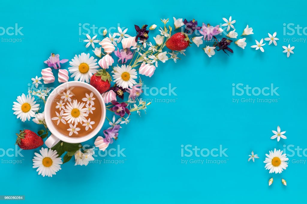 Cup of tea with fresh strawberries, marshmallows and flowers blossom  bouquets on blue surface stock photo
