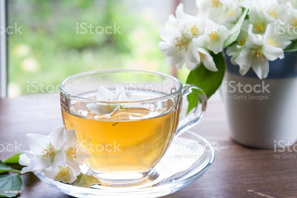 Cup of tea with jasmine and blooming jasmine branch stock photo