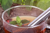istock Cup of tea with peppermint and lemon balm 480067849