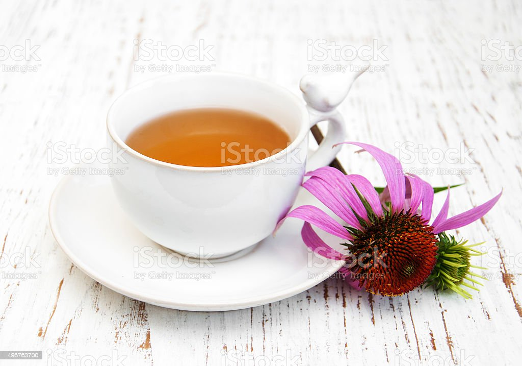 Cup of tea  with purple echinacea stock photo