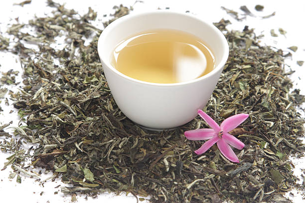 Cup of white tea with dry leaves stock photo