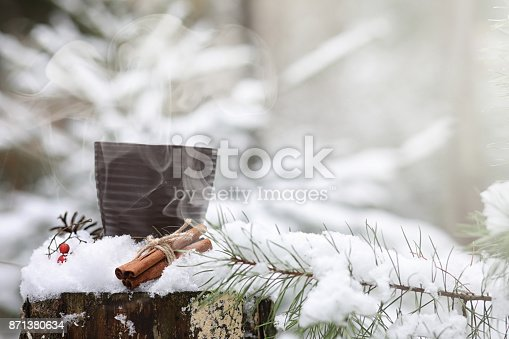 istock A cup with a hot drink in the winter forest. Hot cocoa with cinn 871380634