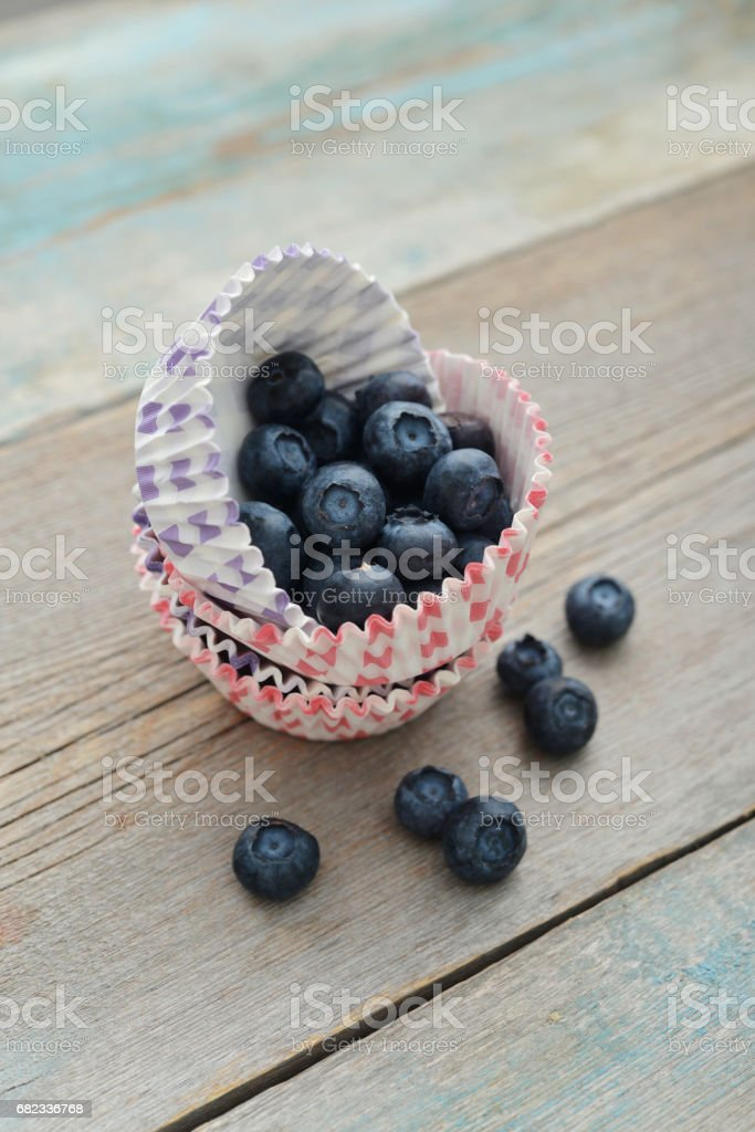 Cupcake cases with blueberry royalty free stockfoto