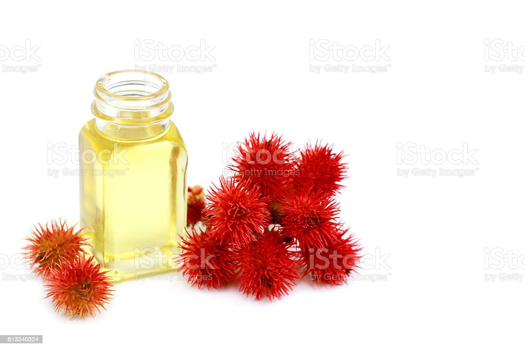 Curative castor oil isolated on white stock photo