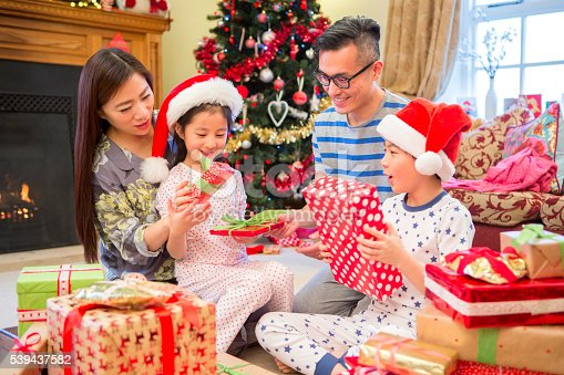 istock Curiosity at Christmas Time 539437582