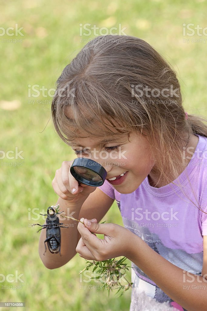 Curious Girl Looking At Beetle Through Magnifying Glass stock photo