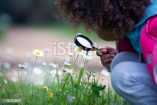 Close up, side view of unrecognized 5 years old little girl exploring chamomile flowers using a magnifying glass.