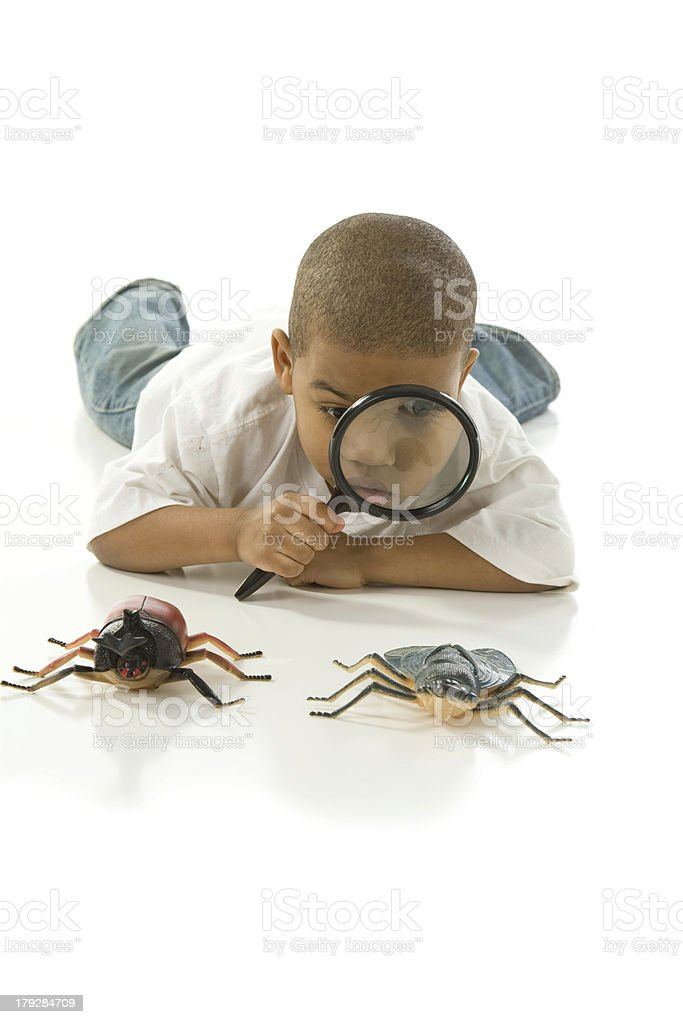 Curious Little Boy Looks at Bugs royalty-free stock photo