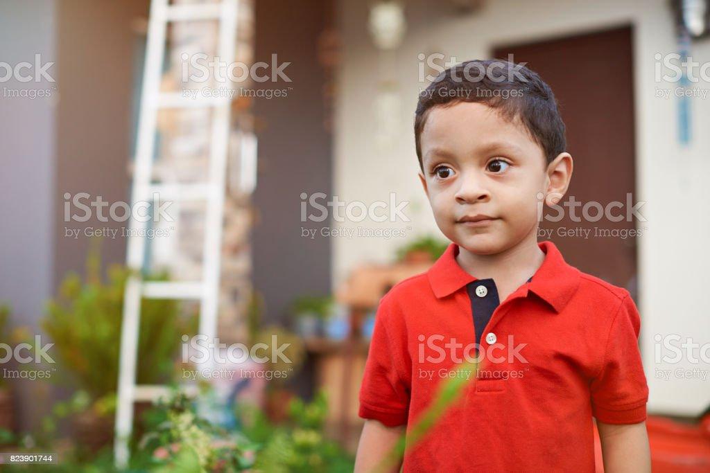 Curious little latino boy kid stock photo