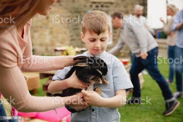 Curious of the rabbit picture id1089670876?b=1&k=6&m=1089670876&s=612x612&h=hkndtxglkud8r0jblx7shtyncbmk8hmm4hbuzo3oebo=