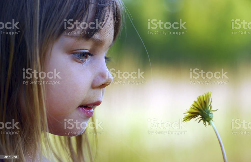 Curious royalty-free stock photo