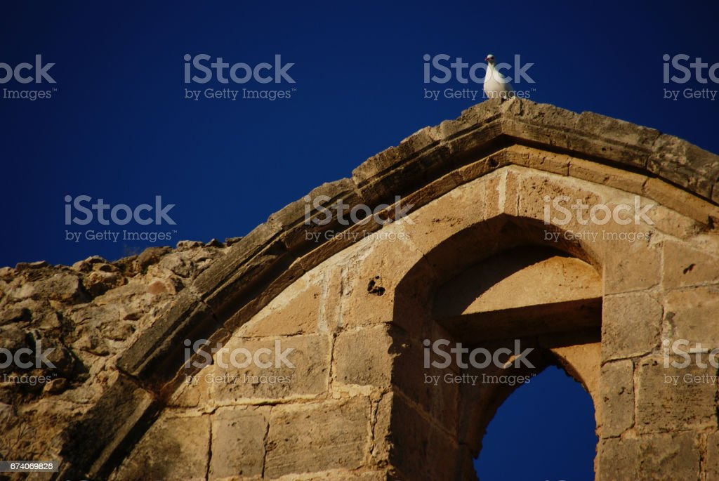 curious pigeon watching people on the top of the old - stone arch royalty-free stock photo