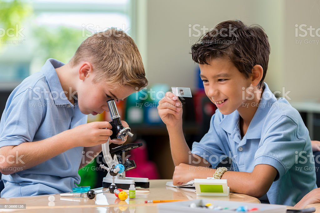 Handsome private schoolboys analyze something by using a microscope....