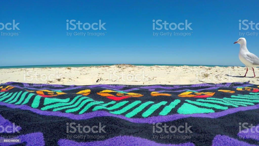 Curious seagull walking past beach towel - fotografia de stock