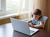 istock Curious toddler boy explores the laptop and presses buttons on computer keyboard. Online education for babies. 1218272714