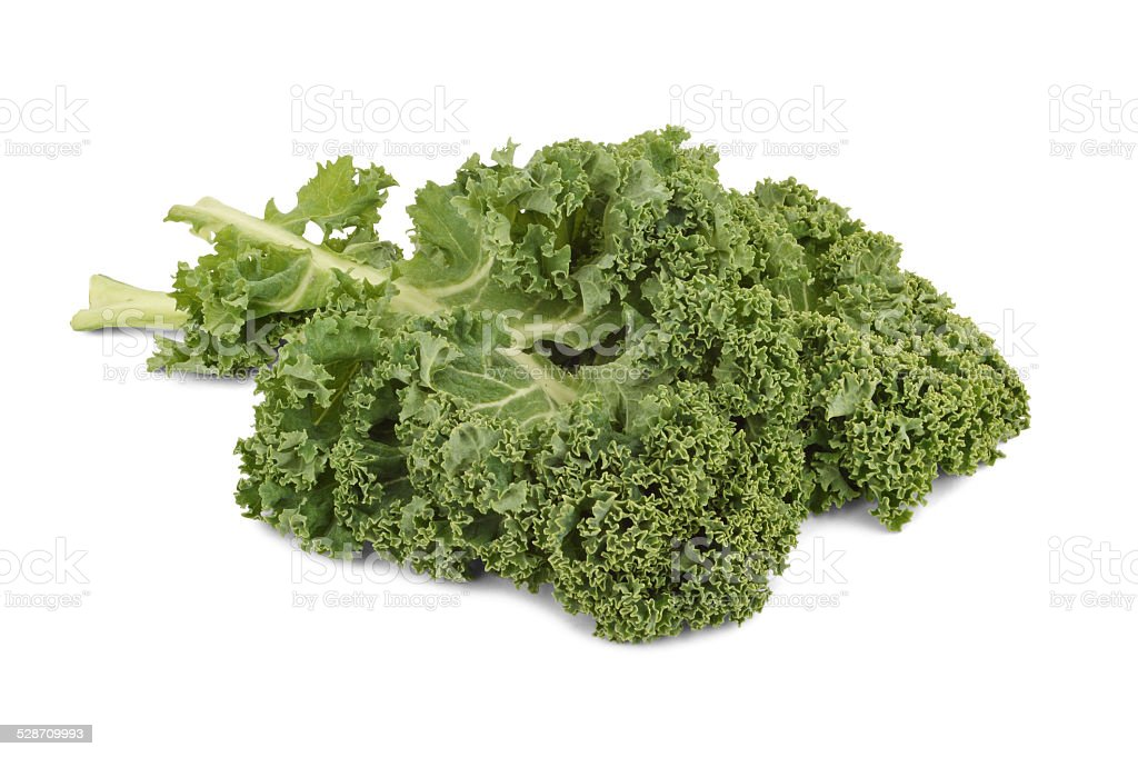 curly kale leaf - Stock Image stock photo