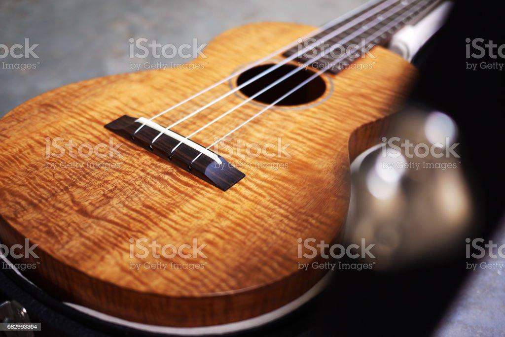 curly koa ukulele satin finished stock photo