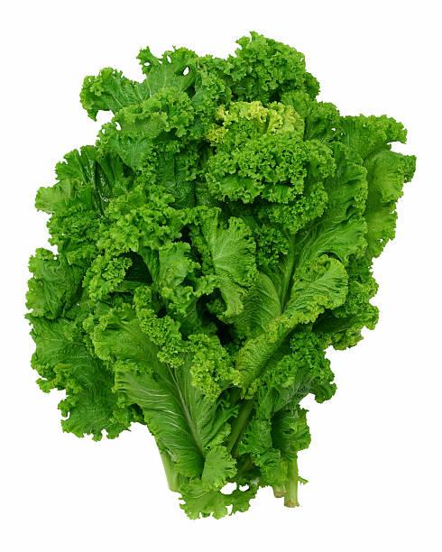 Curly feuilles vertes la moutarde - Photo