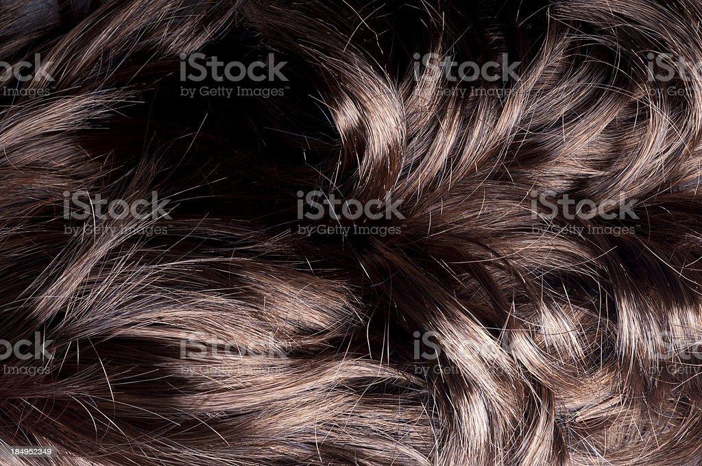 curly shine royalty-free stock photo