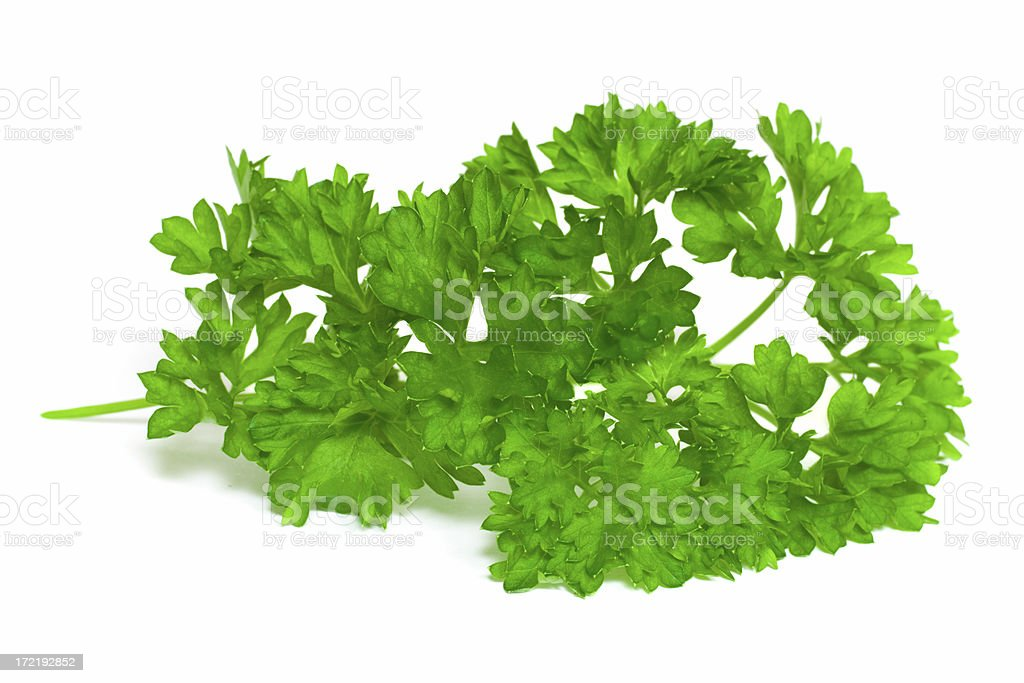 Curly-Leaf Parsley Display royalty-free stock photo
