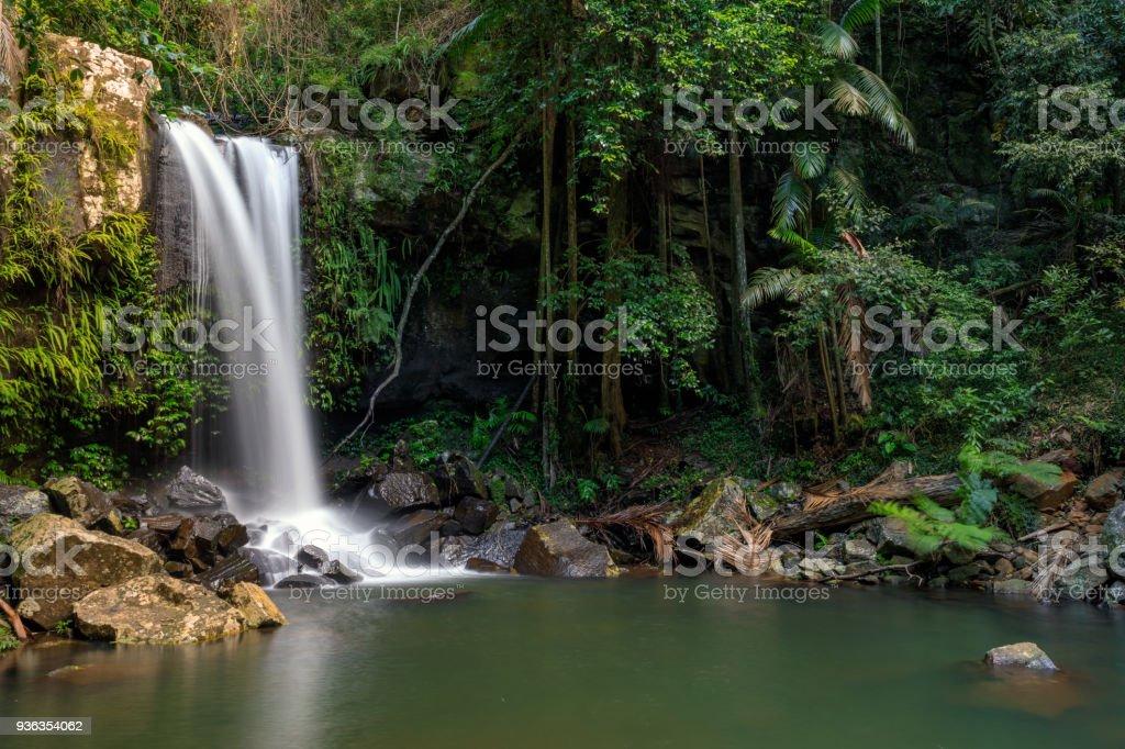 Curtis Falls - Tropical Rainforest Waterfall Australia stock photo