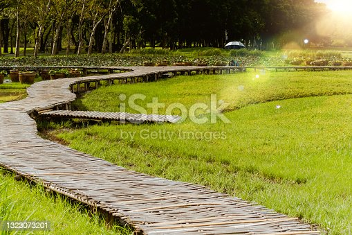 istock Curve Bamboo Bridge. Curved wooden bridge at park in paddy field 1323073201