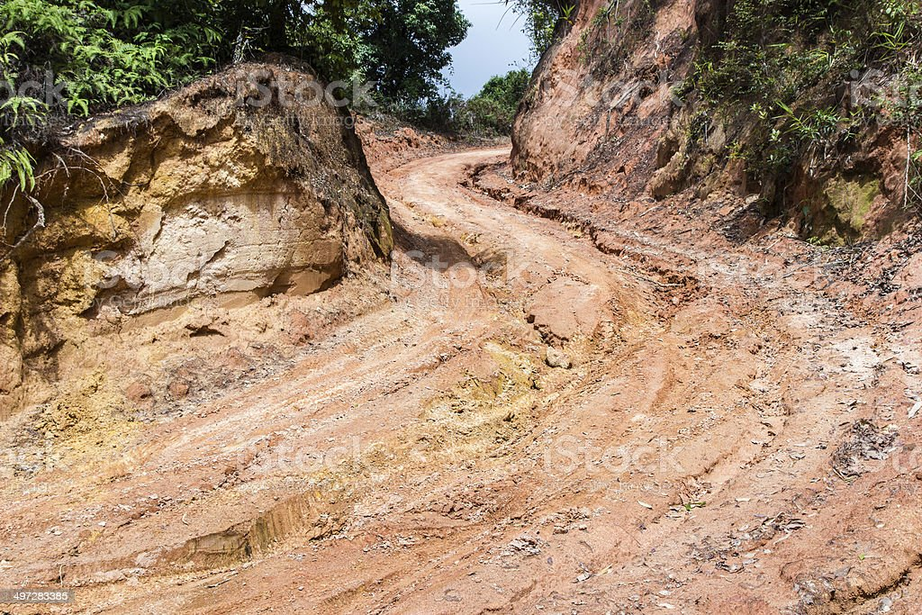curve dirt road in rural with Rain  forest royalty-free stock photo