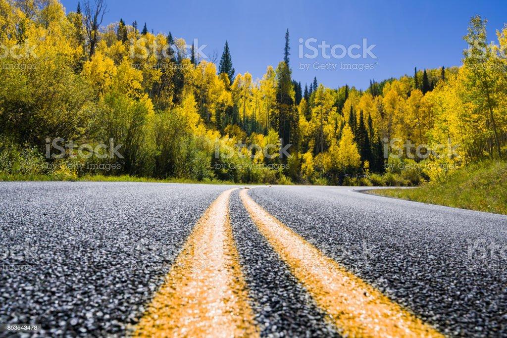 Kurve im Herbst Herbstfarben Bergstraße – Foto